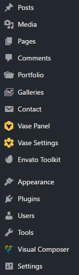 vase-options